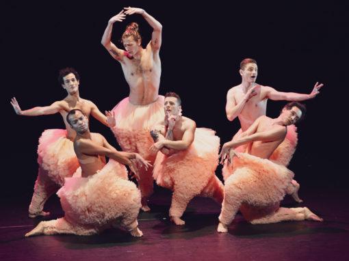 Tutu «La danse dans tous ses états»